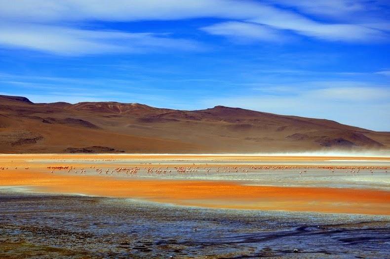 LagunaColorada12 Кровавая лагуна в Боливии