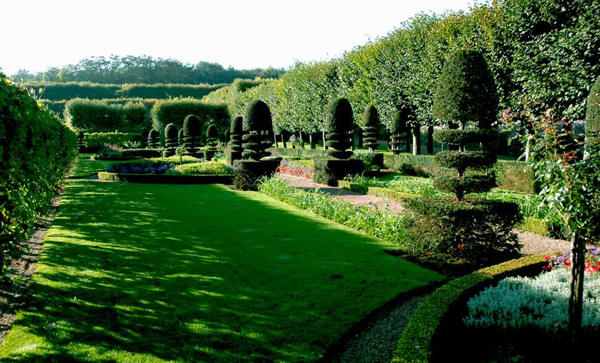 http://www.chateauvillandry.fr/en/files/2012/03/chateau_gardens_villandry_herb_garden.jpg