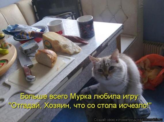 1359322250_1359093524_kotomaun (570x427, 63Kb)