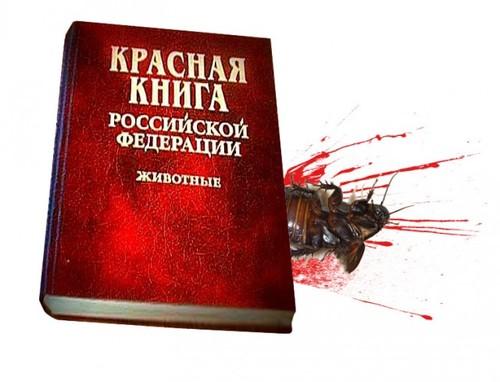 Кто вычёркивает редких животных из Красной книги России?