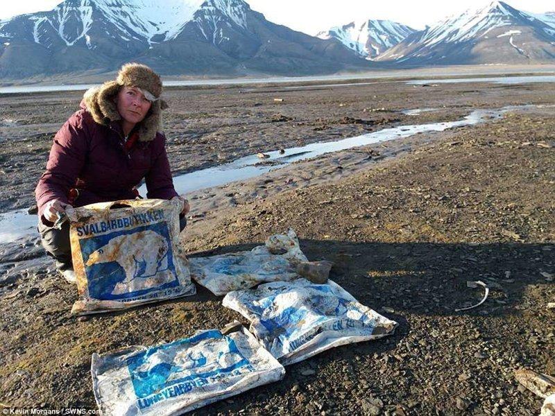 На одном из пляжей команда нашла пластиковые пакеты с изображением белых мишек - из местного супермаркета животные, загрязнение окружающей среды, новости, пластик, пластиковые отходы, фото, экология, экспедиция