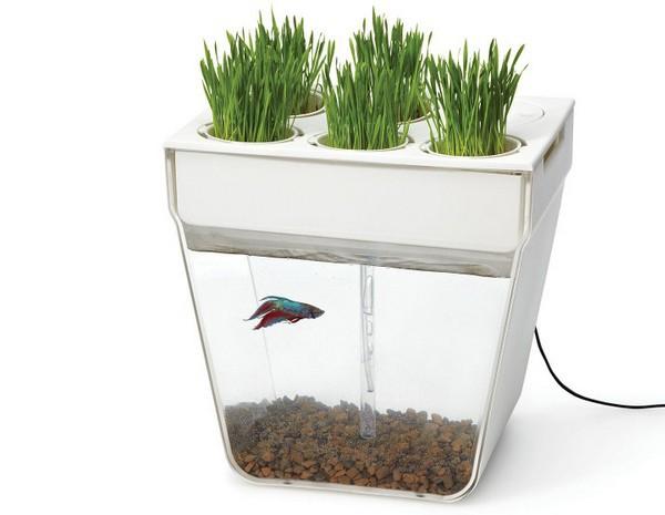 Aquafarm от Back To The Roots