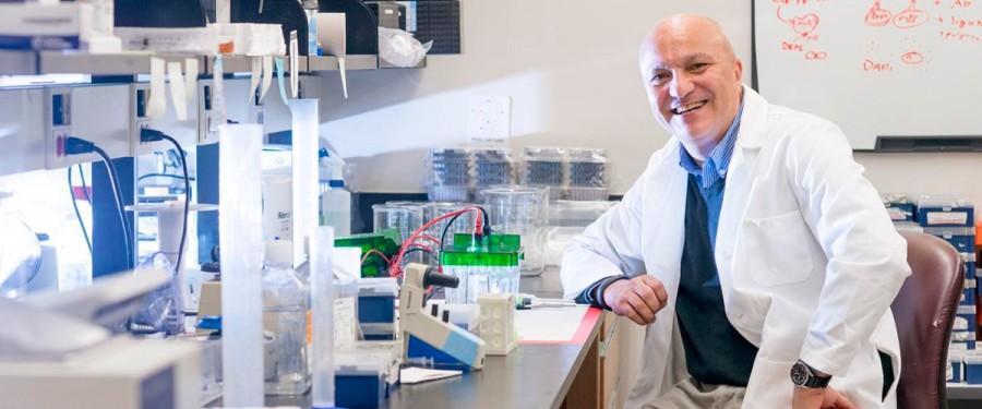 Новый метод лечения рака останавливает старение