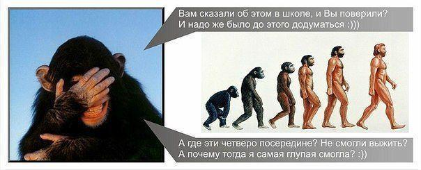 Теория Дарвина. Распиаренный…