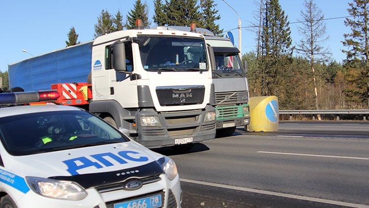 В Петрозаводске перед судом предстанет 30-летний водитель, сбивший на зебре мать с двумя детьми