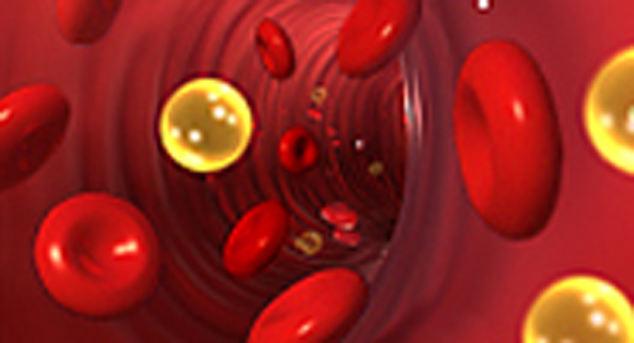 Снизить уровень холестерина с помощью народных средств