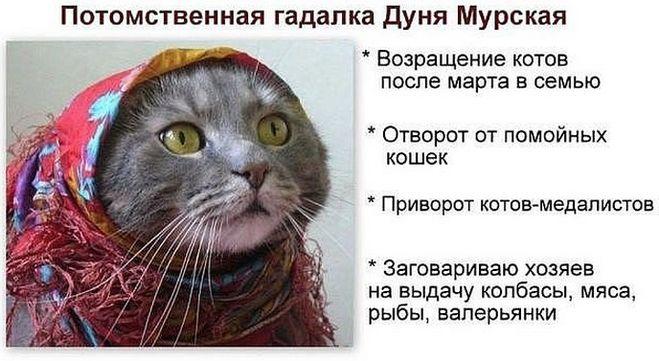 Про гадалок)))