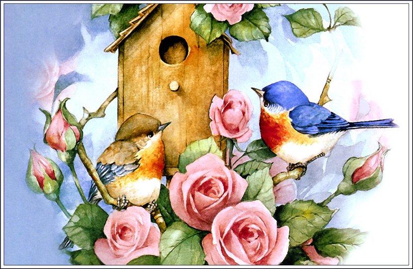 для эскизы красивых птиц с цветами выбору термобелья