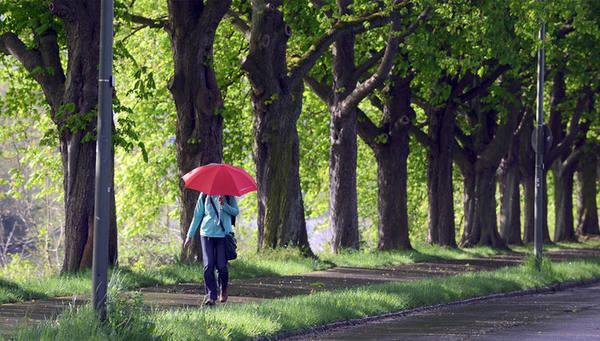 Дожди и холода: в выходные а…