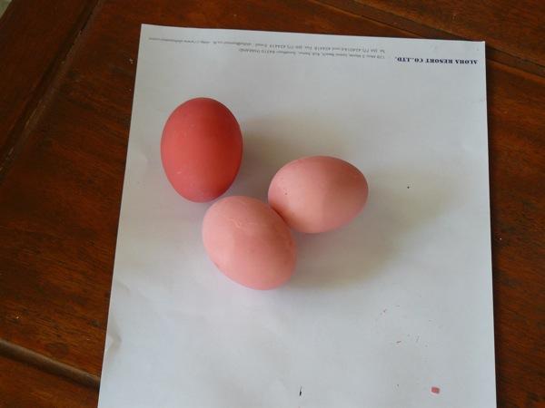 Осторожно, Крашеные яйца!