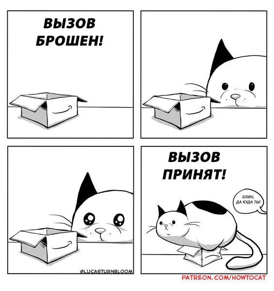 Правдивые комиксы о «кото-ди…