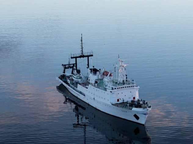 Высадка десанта Северного флота на бронетехнике попала на видео