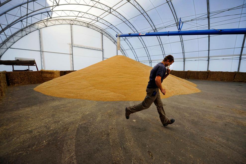 bp131 Как накормить 7 миллиардов
