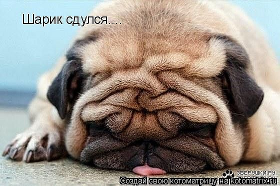 Иногда  надо и отдохнуть :))