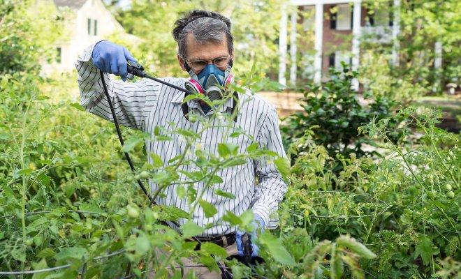 Фунгицид, инсектицид и акари…