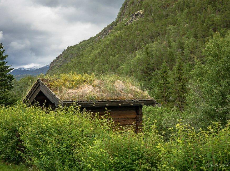 Для чего строят зимовье в лесу и как им пользоваться?