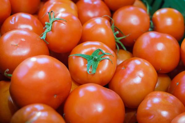 Урожайность овощей увеличили аграрии Приморья