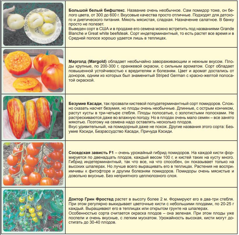 Экзотические сорта помидоров