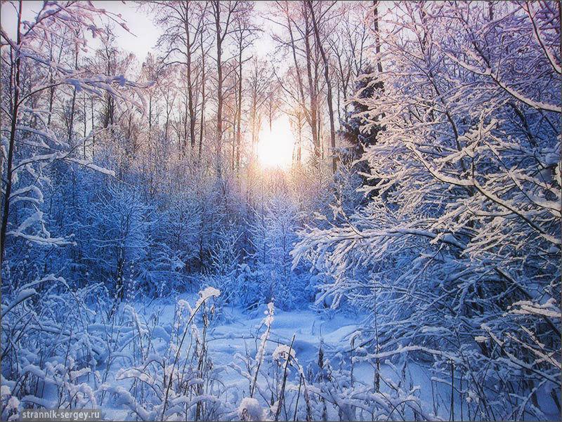 Новогодние открытки русской зимы