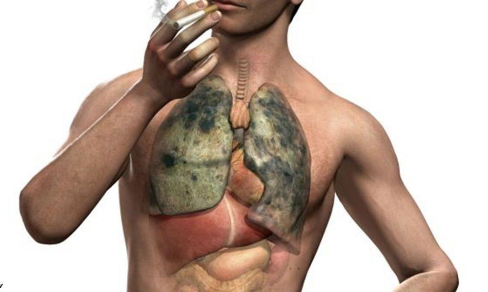 5 трав, очищающих легкие, которые нужны каждому курильщику