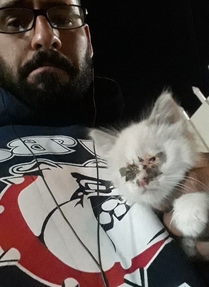 Он нашел маленького больного котенка на улице и был полон решимости вылечить его