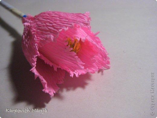 Мастер-класс Свит-дизайн День рождения Бумагопластика МК бархатных тюльпанов и Двухцветный стиль Бумага гофрированная Бусинки Продукты пищевые фото 13