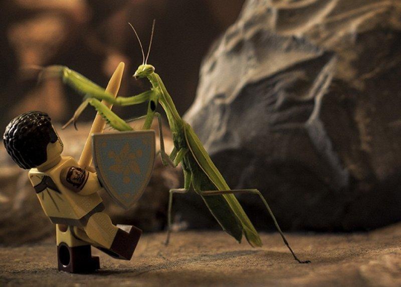 Фотограф снимает сценки с фигурками LEGO и насекомыми