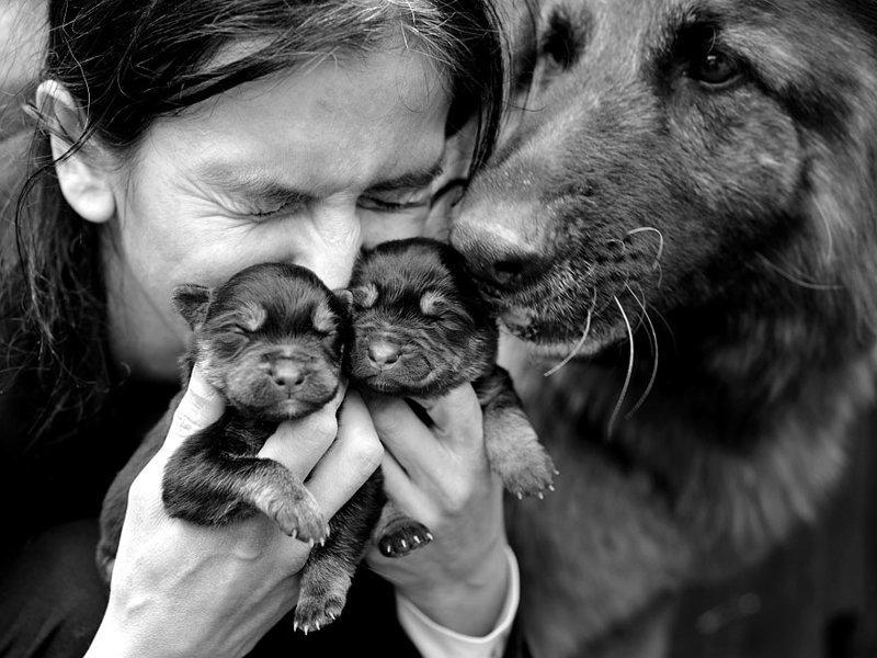 Добрые фотографии из польской деревни от отца двоих детей