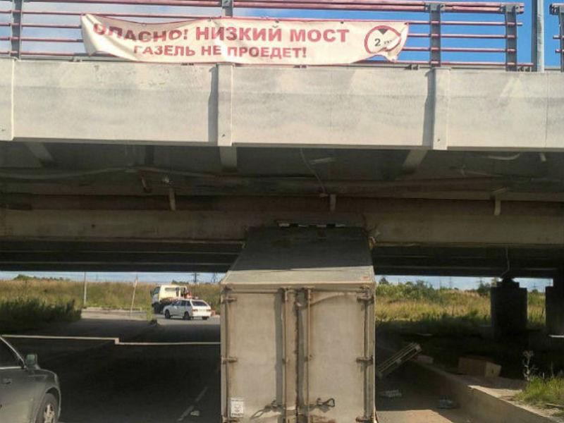 В Петербурге не умеют читать