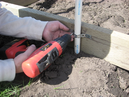 Закрепление дуг: Прикручиваем дуги металлическим крепежом к основанию теплицы.