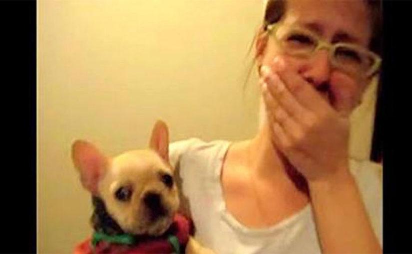 Хозяйка сказала своей собачк…