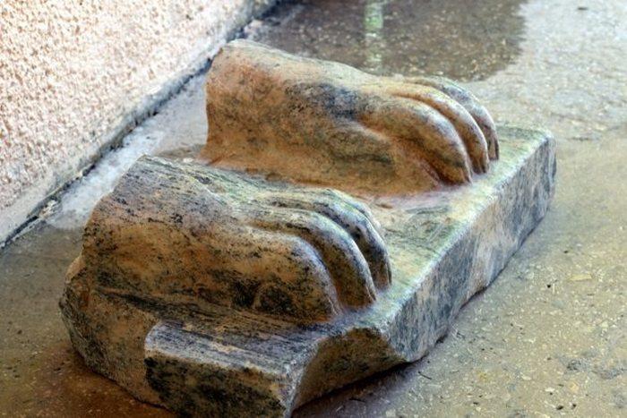 Лапы сфинкса, оказавшегося в Израиле.