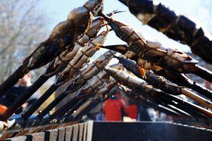 Лещ, треска и шпроты. 3 интересных блюда из балтийской рыбы