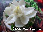 Цветок из лука