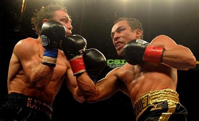 5 самых простых и действенных ударов из бокса