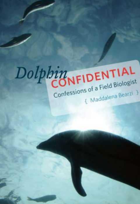 Биолог стала свидетельницей того, как дельфины спасли самоубийцу