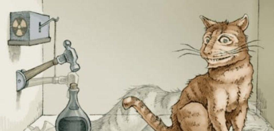 Так жив кот Шредингера или мертв?