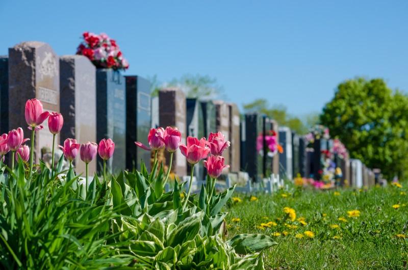 Какие цветы посадить в память о родных