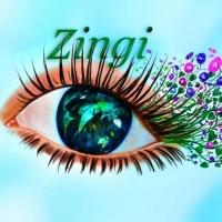 Галерея изображений Zingi