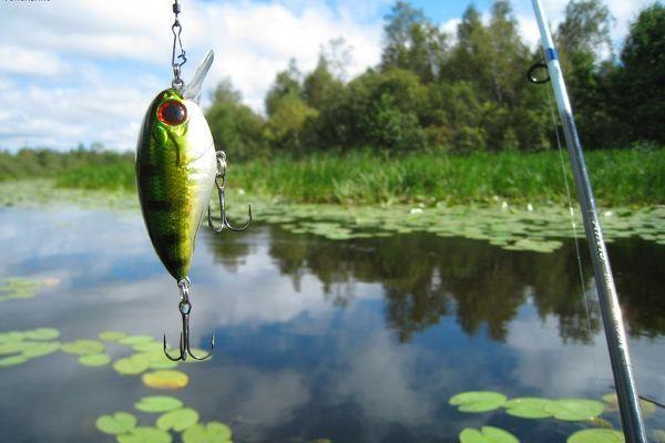 Успех рыбалки зависит от погодных условий