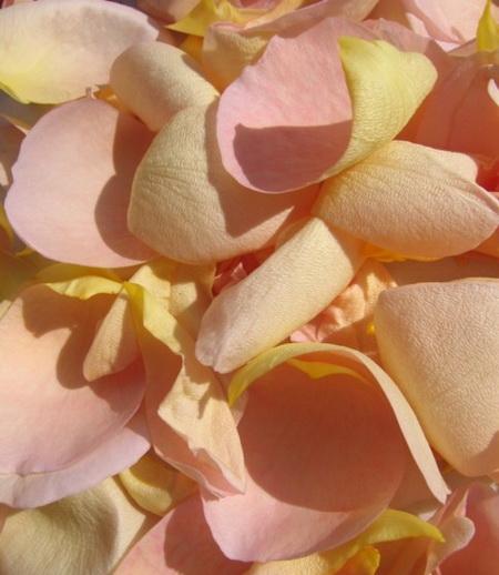 Дизайн свадебных бокалов с лепестками цветов - как сделать
