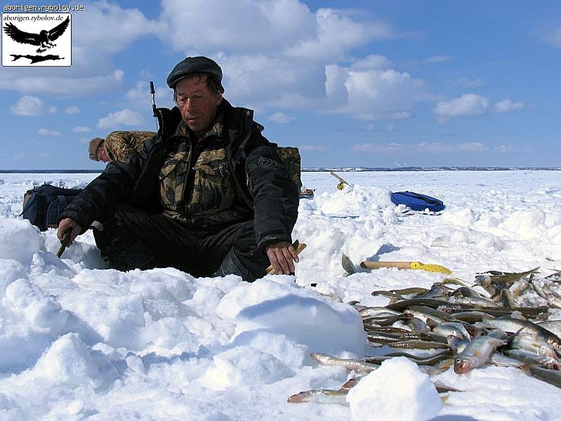 сахалинская рыбалка на корюшку