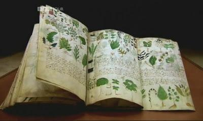 Манускрипт назван так по имени его бывшего владельца — американского книготорговца У.Войнича, мужа известной писательницы Этель Лилиан Войнич (автора романа «Овод»). Рукопись была куплена в 1912 г. в одном из итальянских монастырей.