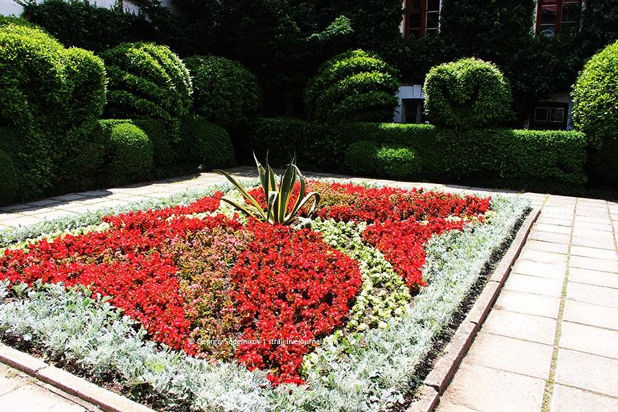 Никитский ботанический сад (розы)