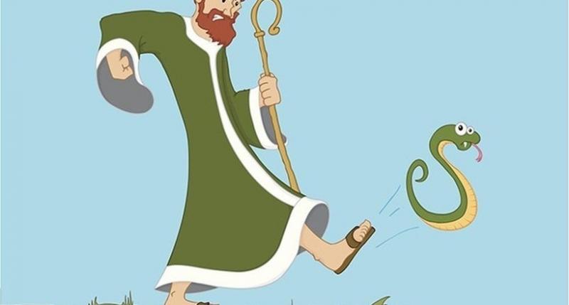 Почему в Ирландии нет змей, …