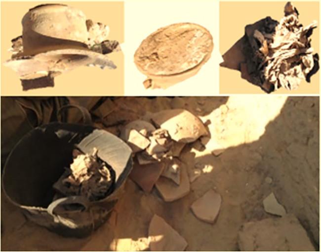 В Египте нашли сыр возрастом…
