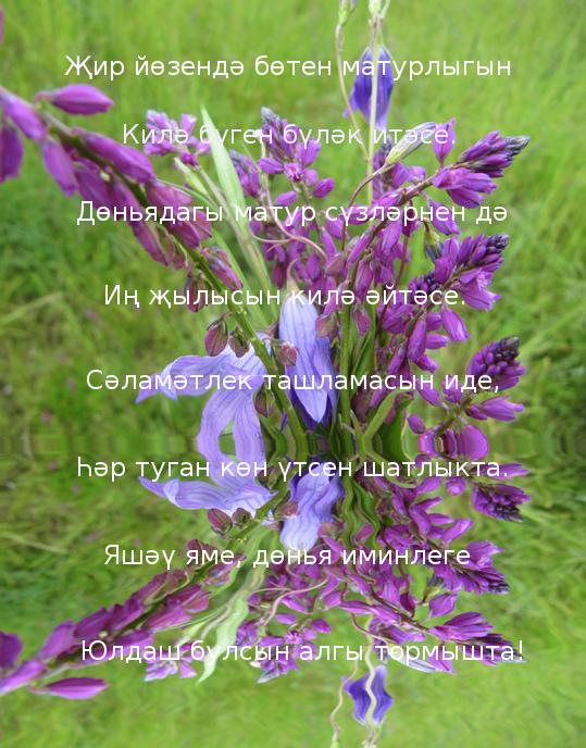 Хэерле иртэ открытка татарча