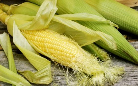 Кукуруза и кукурузные рыльца в рецептах народной медицины