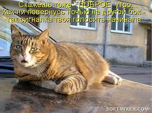 7b0fad49465c3852704f26c5092_prev