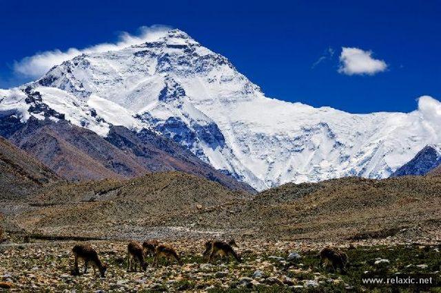 Крыша мира (фотопутешествие в Тибет)